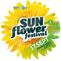 Sunflower Festival@Kolmgut