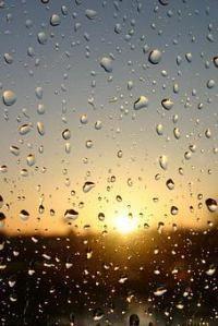 Gruppenavatar von Sommerregen