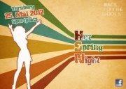 Hot Spring Night 2012 - Das Ennstal wird erbeben!
