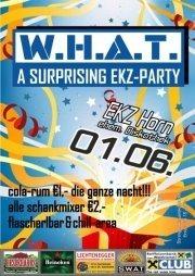 SURPRISING EKZ PARTY