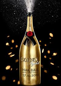 HAK-BALL Schärding 2012 - Golden Night