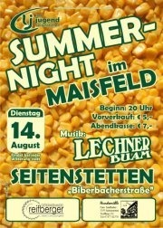 Summernight im Maisfeld