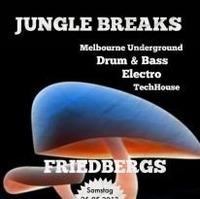 Jungle Breaks - 25 05 2013 - Friedbergs