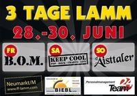 3 Tage Lamm@Festgelönde
