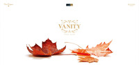 Vanity Fall 2013