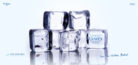 Vanity Ice Party
