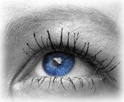 Gruppenavatar von wir haben BLAUE Augen!!!