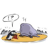 Gruppenavatar von Schiebt den Wal zurück ins Meer...
