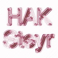 HAK/HAS Steyr - Die Elite