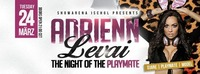 Adrienn Levai l The Night of the Playmate@Showarena