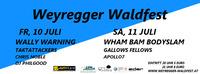 Weyregger Waldfest 2015@Weyregger Waldfest
