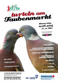 Turteln am Taubenmarkt@Taubenmarkt Linz