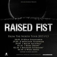 Raised Fist swe + guests