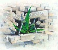 Gruppenavatar von legalize ganja