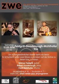 Feldgrill-Goodenough-Mühlhofer Trio@ZWE
