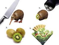 Gruppenavatar von wenn die Kiwi ein Schnitzel wäre, könnte man Pommes dazu essen