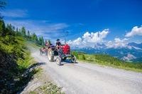 Alpentrophy - Oltimer Traktorentreffen in Schlamding@Hohenhaus Tenne
