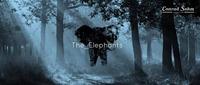 The_Elephants w/ Black Triangle // 24. Juni 2016 // 5. Conrad Sohm Kultursommer-Festival@Conrad Sohm
