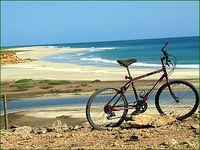 Gruppenavatar von Lieber mit dem Fahrrad zum Strand, als mit dem Mercedes zur Arbeit.