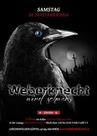 Weberknecht wird schwarz@Weberknecht
