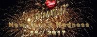 Schatzi´s New Years Madness 16 / 2017@Schatzi Bar