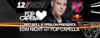 EDM-Night feat. Flip Capella@Ypsilon