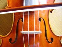 Gruppenavatar von kann Geige spielen!