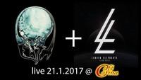 Liquid Earth // London Elephants live at Cafe Carina@Café Carina