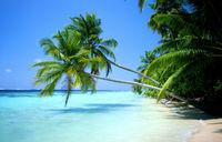 Gruppenavatar von Sommer, Sonne, Strand und Meer
