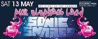 Pink Elephant Land – We start in the Summer / Sonic Snares@Bollwerk