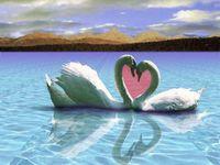 Gruppenavatar von aus freundschaft kann ganz schnell liebe werden ABER aus liebe fast nie freundschaft!!!!!