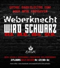 Weberknecht wird schwarz | 23.09.@Weberknecht