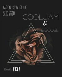 Cooljam&The Goose ins Diva@Diva Club