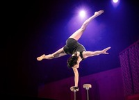 Cirque Noël | The 7 Fingers@Helmut-List-Halle