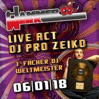 DJ Pro Zeiko im Hammerwerk@Hammerwerk