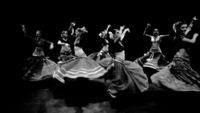 Balkan Gypsy Party - FLUC (upstairs)@Fluc / Fluc Wanne