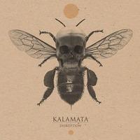 Kalamata & Prototyper@dasBACH