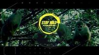 ★ Stay Wild ★ meets Die Kantine Salzburg@Die Kantine