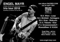 ENGEL MAYR TRIO live at LOOP Vienna@Loop
