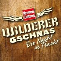 Wilderer Gschnas 2019@Palais Kaufmännischer Verein