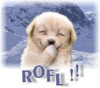 Gruppenavatar von ROFL du hast LOL gesagt!