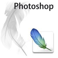 Adobe Photoshop - Die wahre Schönheit