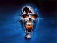 Userfoto von skullhead2