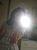 kathi_mausal_91