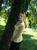 lacki_girl