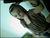 sweety_mausal_0203