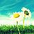 Winni_Pooh21