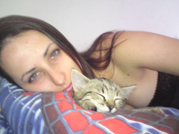 meine kleine Katze -