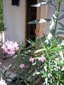 -------ITALIEN 2008--------1 42395547