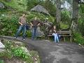Gartenblume - Fotoalbum